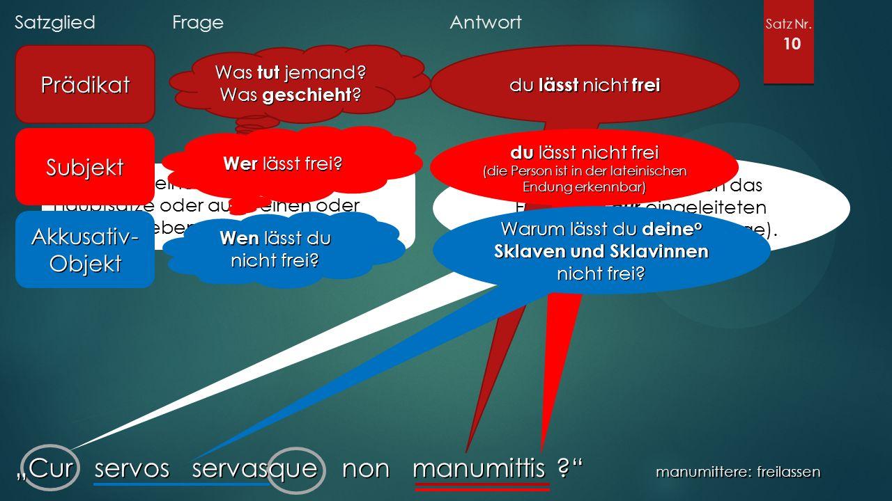 """Satzglied Frage Antwort Satz Nr. 10 """"Cur servos servasque non manumittis ?"""" manumittere: freilassen Prädikat Was tut jemand? Was geschieht ? Gibt es n"""