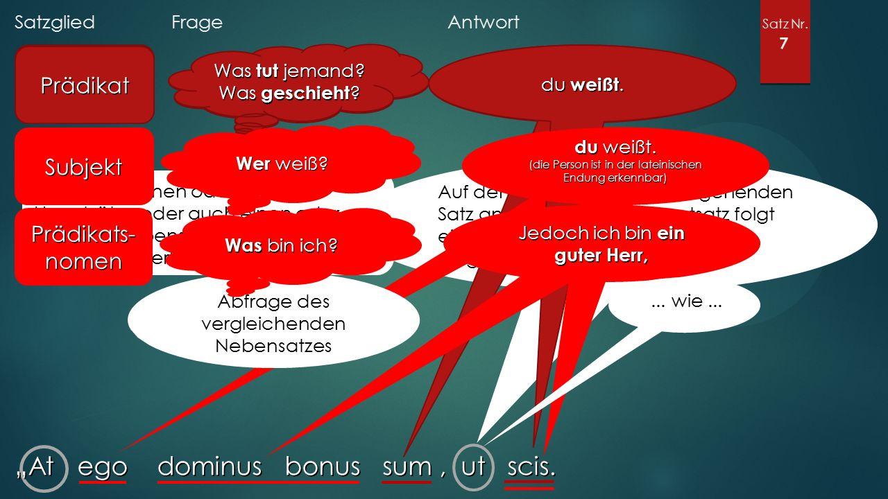 """Satzglied Frage Antwort Satz Nr. 7 """"At ego dominus bonus sum, ut scis."""