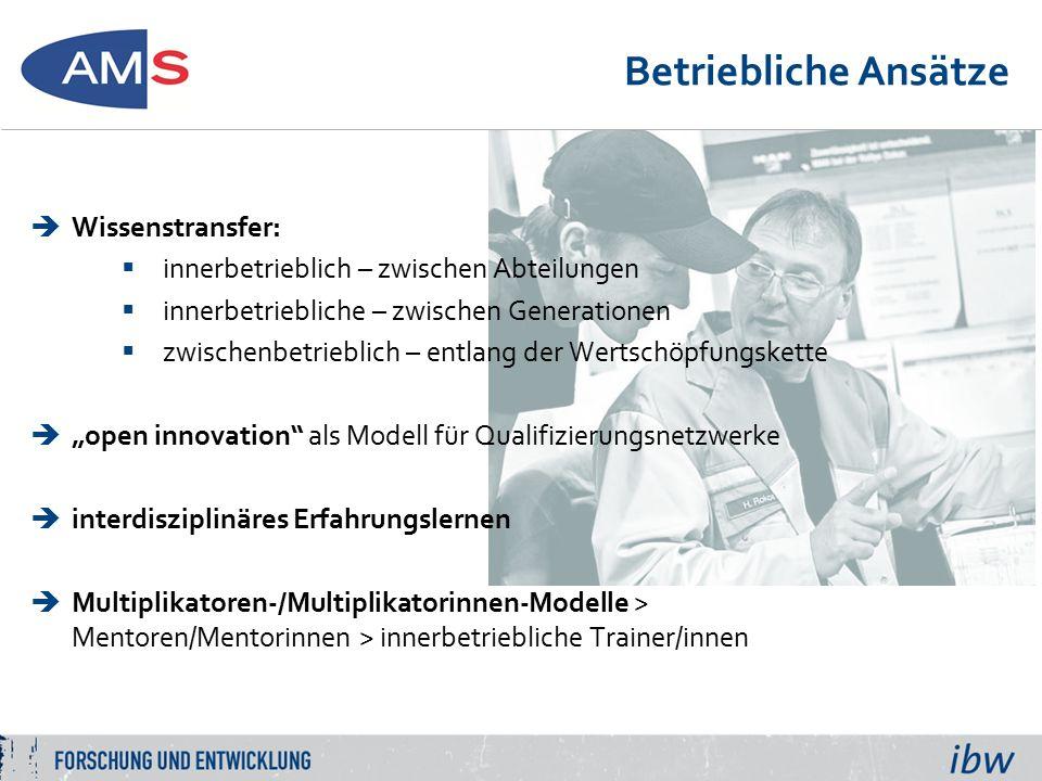 """Betriebliche Ansätze  Wissenstransfer:  innerbetrieblich – zwischen Abteilungen  innerbetriebliche – zwischen Generationen  zwischenbetrieblich – entlang der Wertschöpfungskette  """"open innovation als Modell für Qualifizierungsnetzwerke  interdisziplinäres Erfahrungslernen  Multiplikatoren-/Multiplikatorinnen-Modelle > Mentoren/Mentorinnen > innerbetriebliche Trainer/innen"""