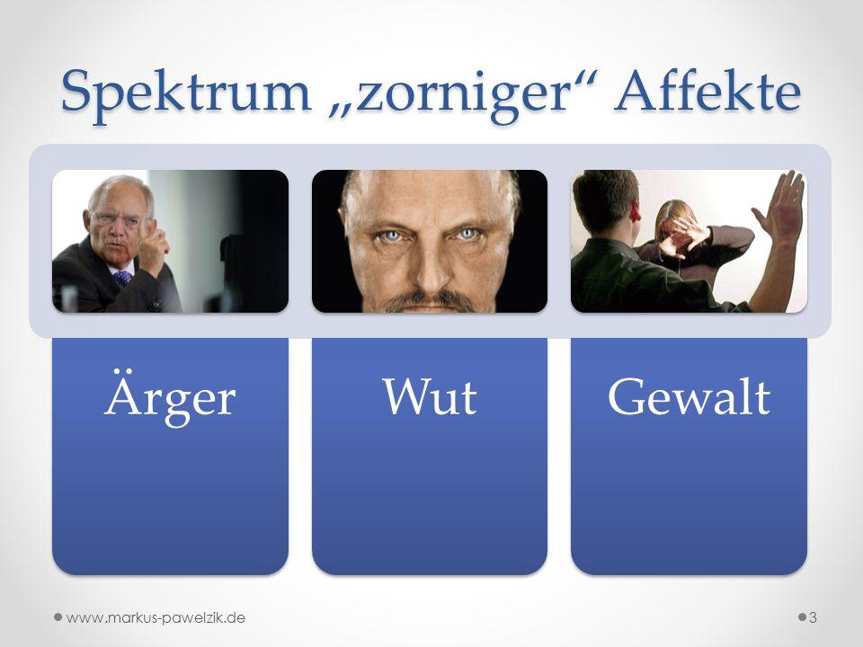 "Spektrum ""zorniger Affekte ÄrgerWutGewalt 3www.markus-pawelzik.de"