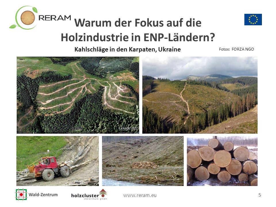 www.reram.eu 5 Warum der Fokus auf die Holzindustrie in ENP-Ländern? Kahlschläge in den Karpaten, Ukraine Fotos: FORZA NGO