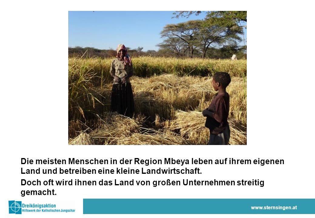 Die Sternsinger-Spenden bewirken, dass… … die Menschen in Tansania ihr Land verteidigen … Bauernfamilien ihre Ernte verbessern … die Gesundheit der Kinder gestärkt wird www.sternsingen.at