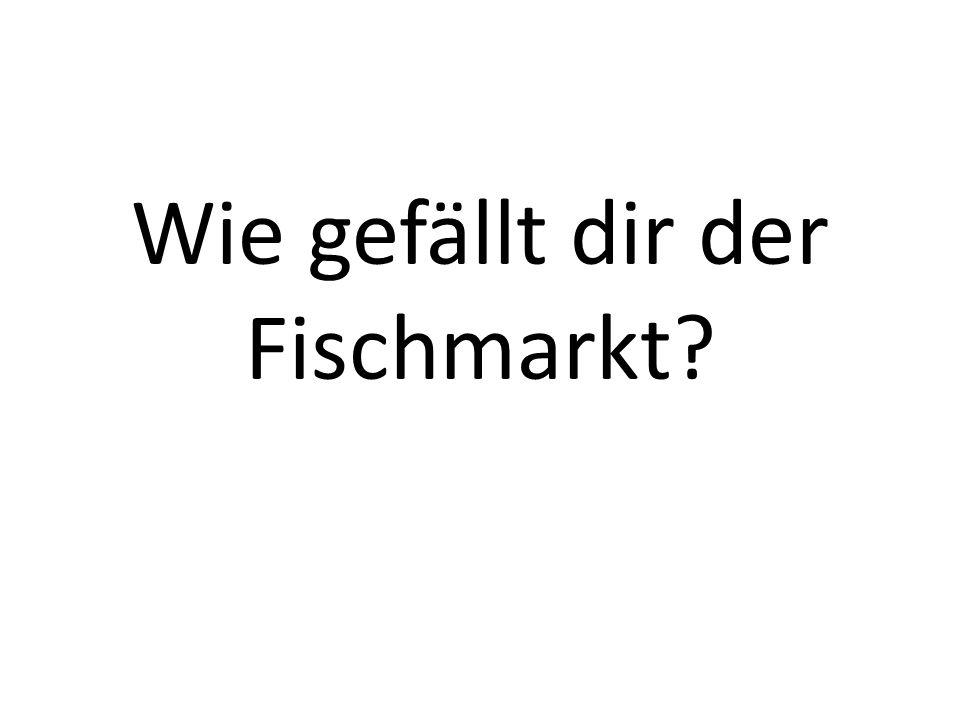 Wie gefällt dir der Fischmarkt?