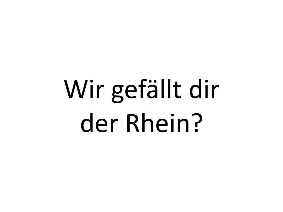 Wir gefällt dir der Rhein?