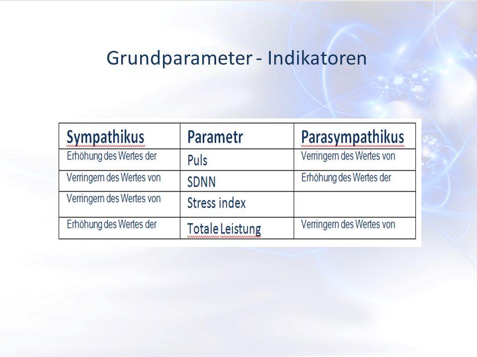 Grundparameter - Indikatoren
