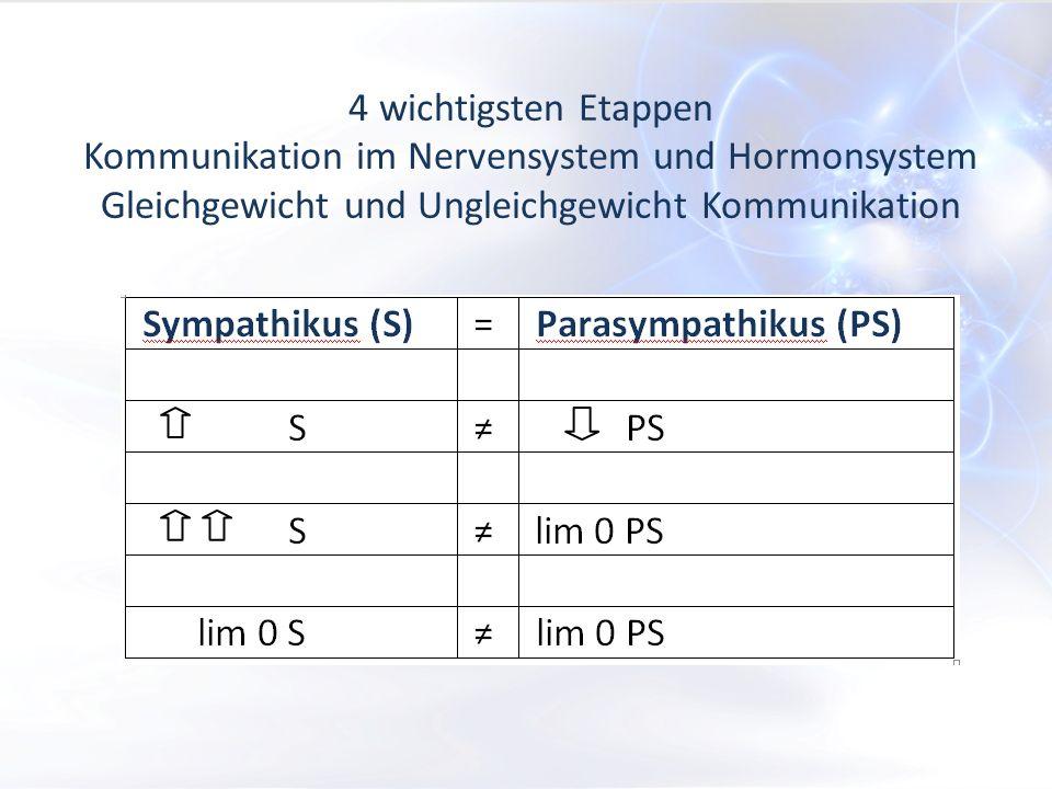 4 wichtigsten Etappen Kommunikation im Nervensystem und Hormonsystem Gleichgewicht und Ungleichgewicht Kommunikation