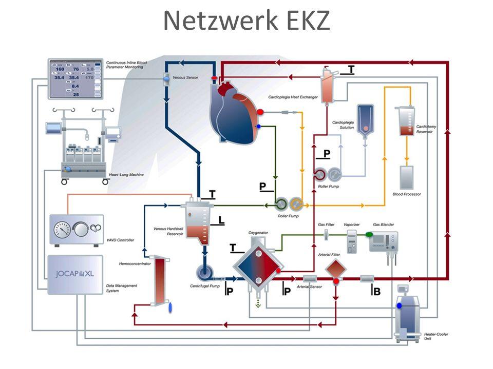 Netzwerk EKZ