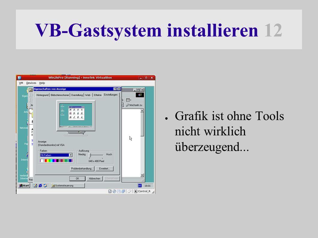 VB-Gastsystem installieren 12 ● Grafik ist ohne Tools nicht wirklich überzeugend...