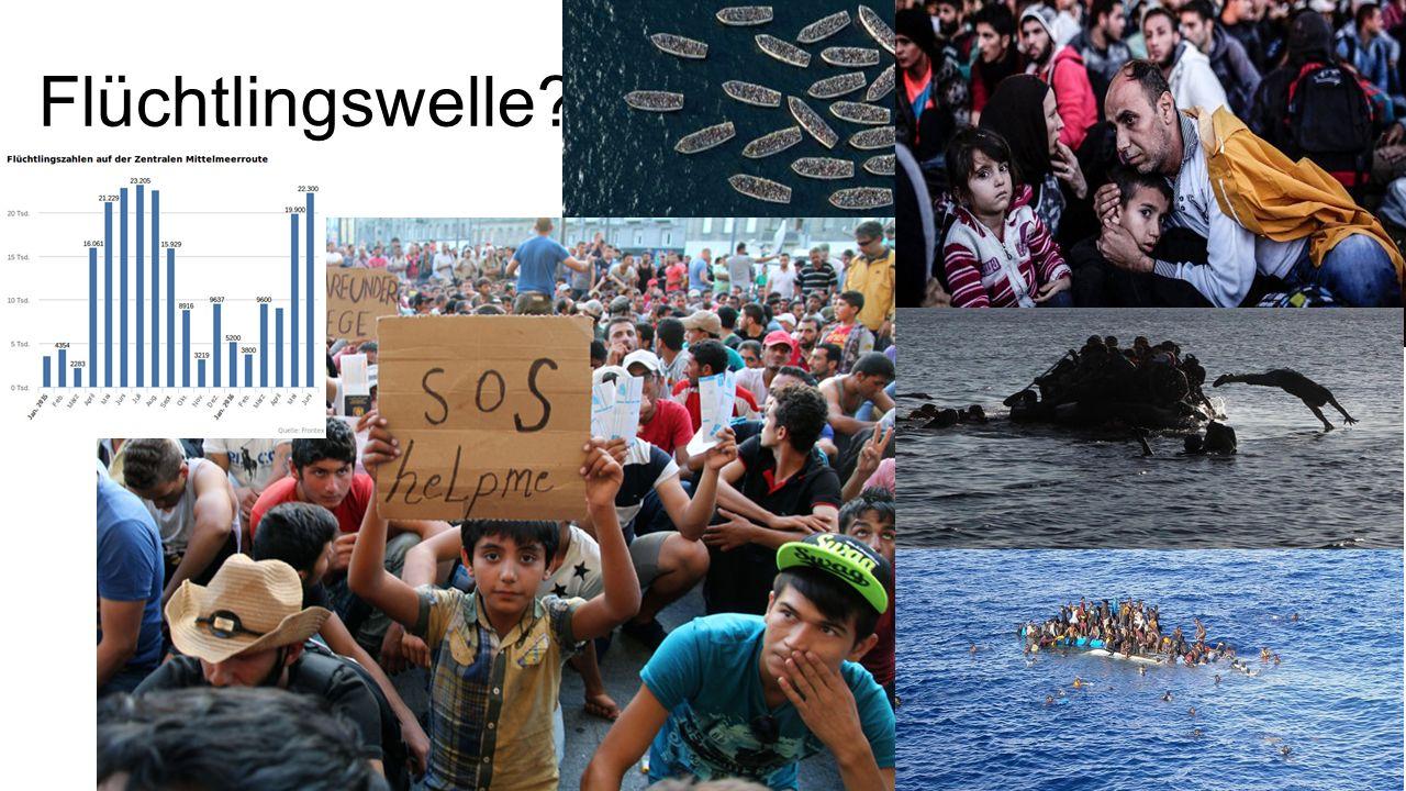 Zuwanderung: Anteil Flüchtlinge ist klein