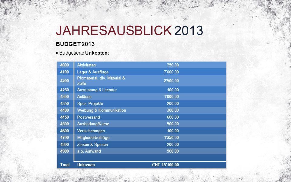 JAHRESAUSBLICK 2013 BUDGET 2013  Budgetierte Unkosten: