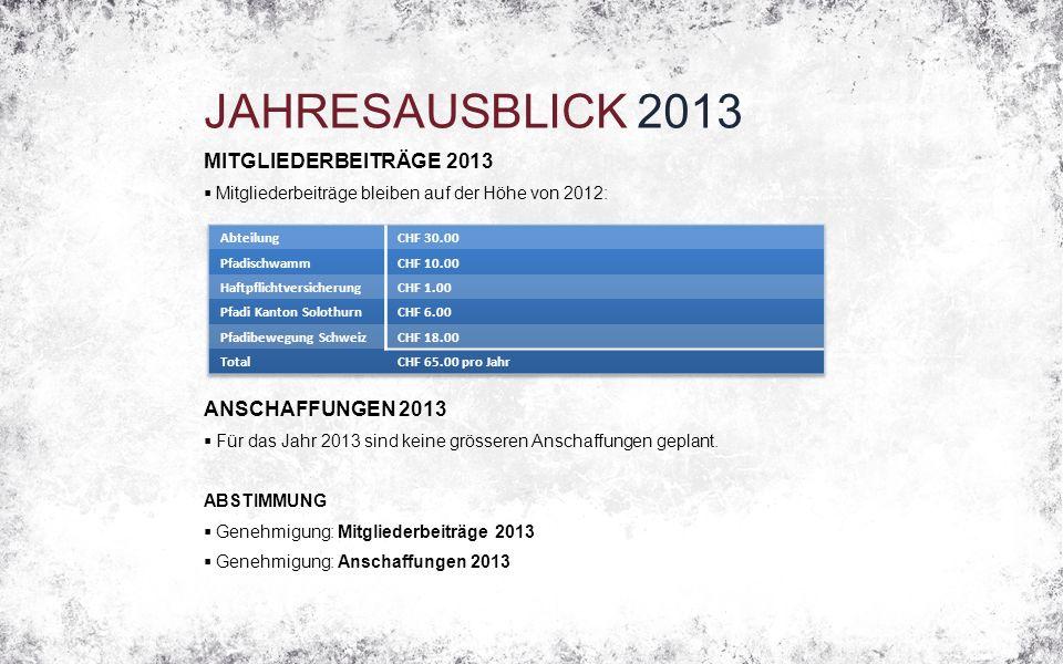 JAHRESAUSBLICK 2013 MITGLIEDERBEITRÄGE 2013  Mitgliederbeiträge bleiben auf der Höhe von 2012: ANSCHAFFUNGEN 2013  Für das Jahr 2013 sind keine grösseren Anschaffungen geplant.