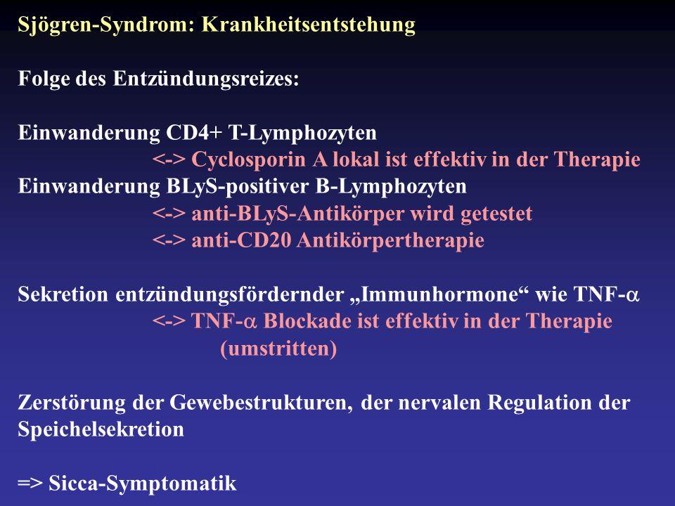 """Sjögren-Syndrom: Krankheitsentstehung Folge des Entzündungsreizes: Einwanderung CD4+ T-Lymphozyten Cyclosporin A lokal ist effektiv in der Therapie Einwanderung BLyS-positiver B-Lymphozyten anti-BLyS-Antikörper wird getestet anti-CD20 Antikörpertherapie Sekretion entzündungsfördernder """"Immunhormone wie TNF-  TNF-  Blockade ist effektiv in der Therapie (umstritten) Zerstörung der Gewebestrukturen, der nervalen Regulation der Speichelsekretion => Sicca-Symptomatik"""