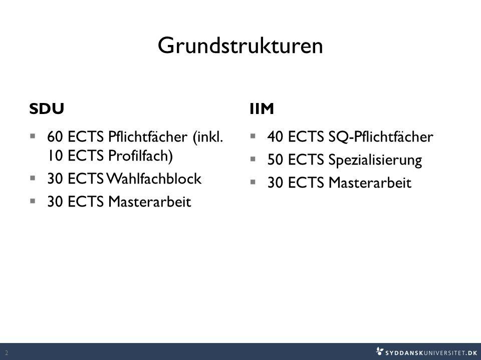 Grundstrukturen SDU  60 ECTS Pflichtfächer (inkl.