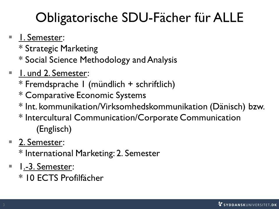 Obligatorische SDU-Fächer für ALLE  1.