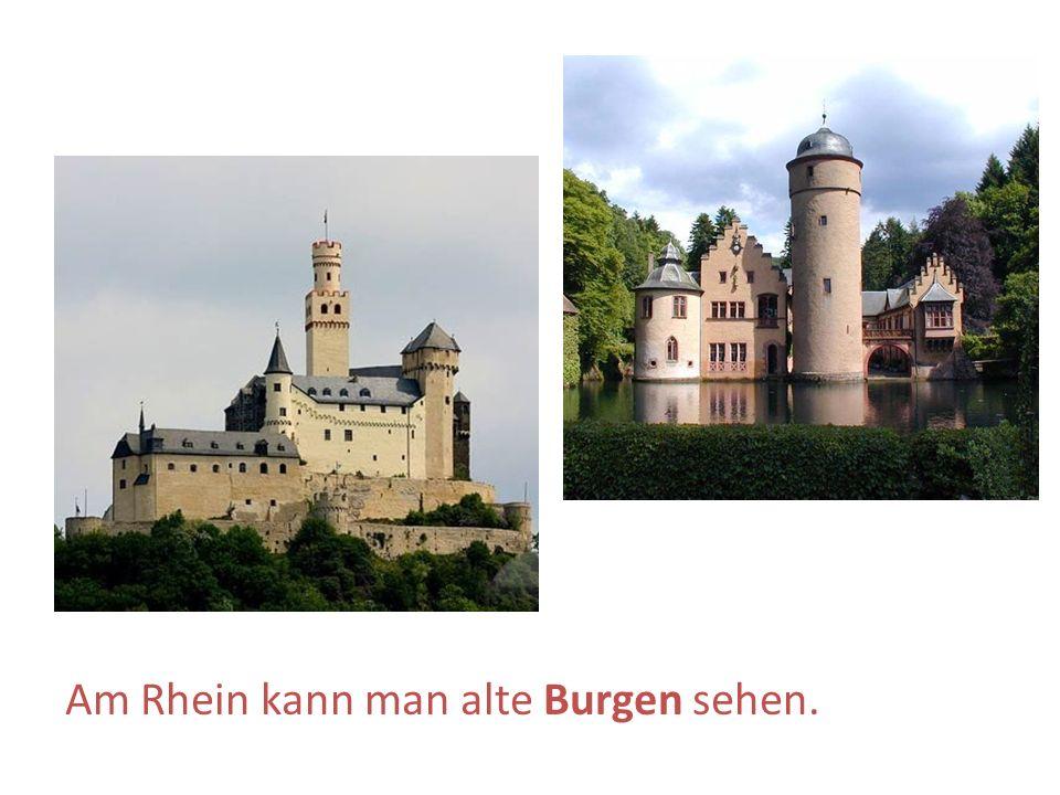Am Rhein kann man alte Burgen sehen.