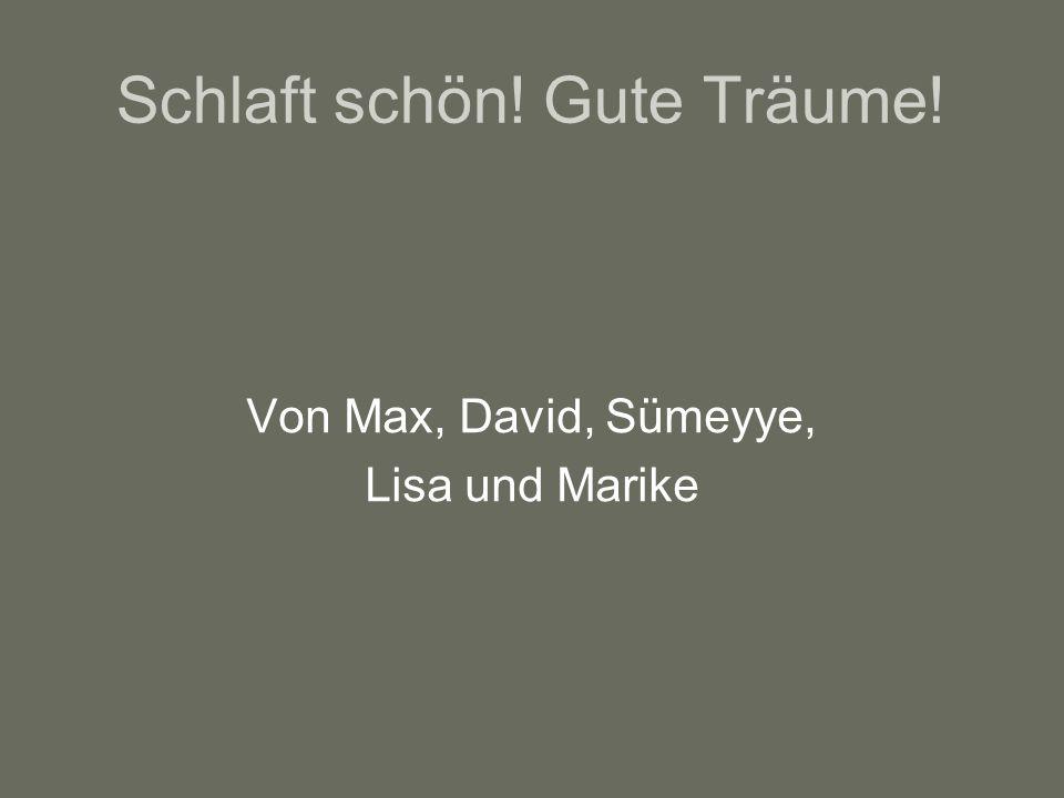 Von Max, David, Sümeyye, Lisa und Marike Schlaft schön! Gute Träume!