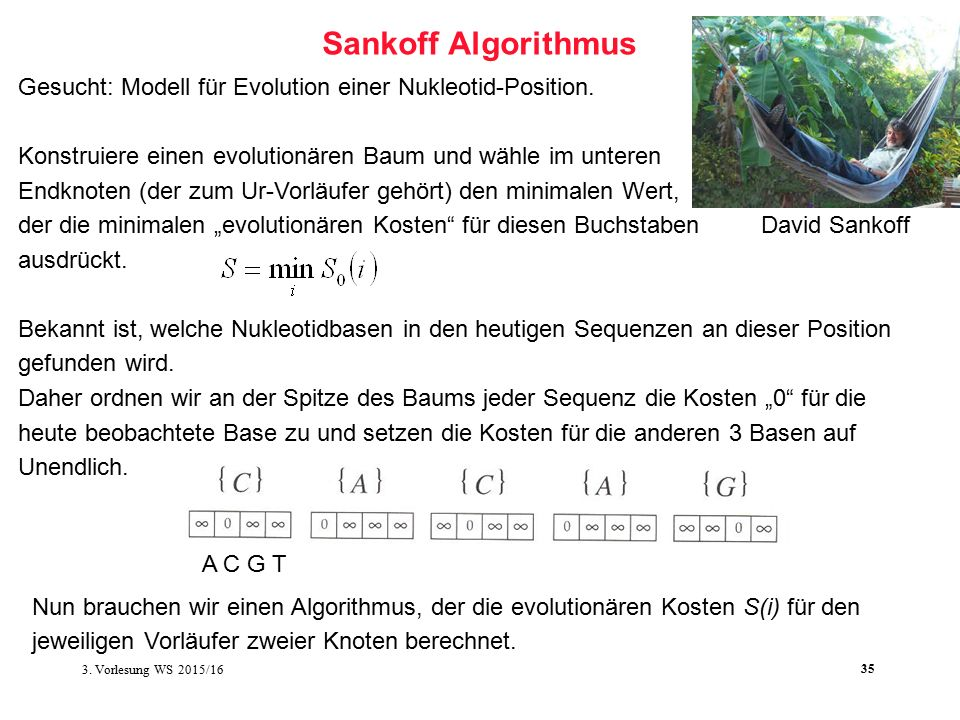 Softwarewerkzeuge der Bioinformatik35 Sankoff Algorithmus Gesucht: Modell für Evolution einer Nukleotid-Position.