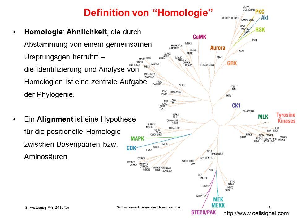 Softwarewerkzeuge der Bioinformatik4 Homologie: Ähnlichkeit, die durch Abstammung von einem gemeinsamen Ursprungsgen herrührt – die Identifizierung und Analyse von Homologien ist eine zentrale Aufgabe der Phylogenie.