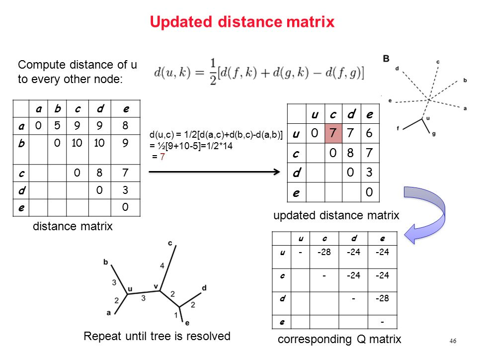 Updated distance matrix 46 Compute distance of u to every other node: ucde u0776 c087 d03 e0 corresponding Q matrix ucde u--28-24 c- d--28 e- Repeat until tree is resolved d(u,c) = 1/2[d(a,c)+d(b,c)-d(a,b)] = ½[9+10-5]=1/2*14 = 7 abcde a05998 b010 9 c087 d03 e0 distance matrix updated distance matrix