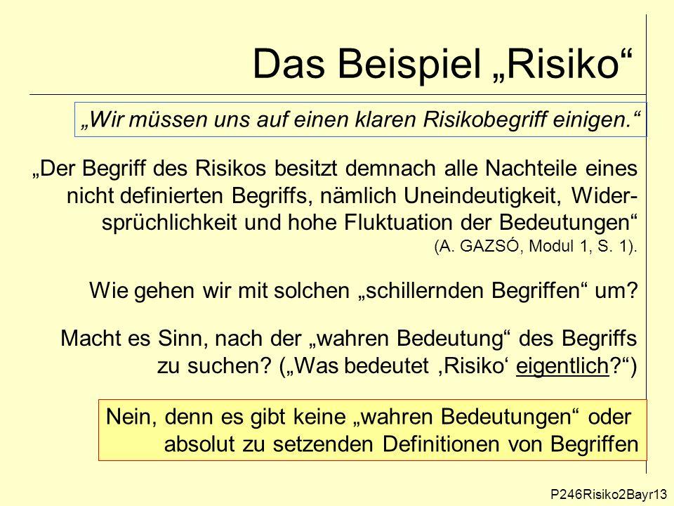 """Das Beispiel """"Risiko P246Risiko2Bayr13 """"Der Begriff des Risikos besitzt demnach alle Nachteile eines nicht definierten Begriffs, nämlich Uneindeutigkeit, Wider- sprüchlichkeit und hohe Fluktuation der Bedeutungen (A."""