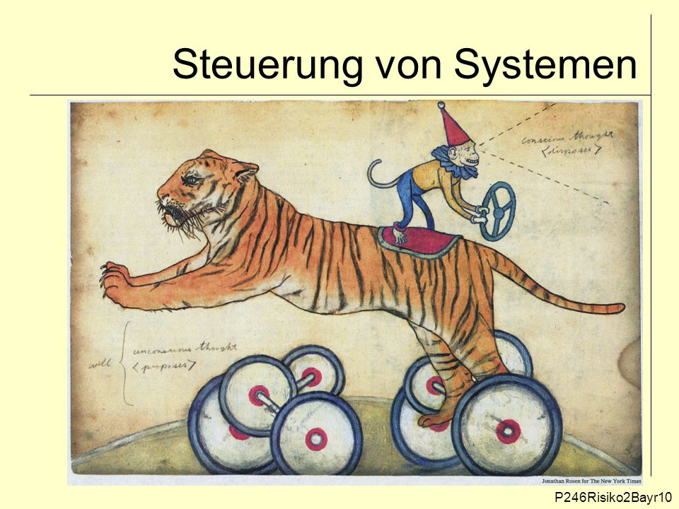 Steuerung von Systemen P246Risiko2Bayr10