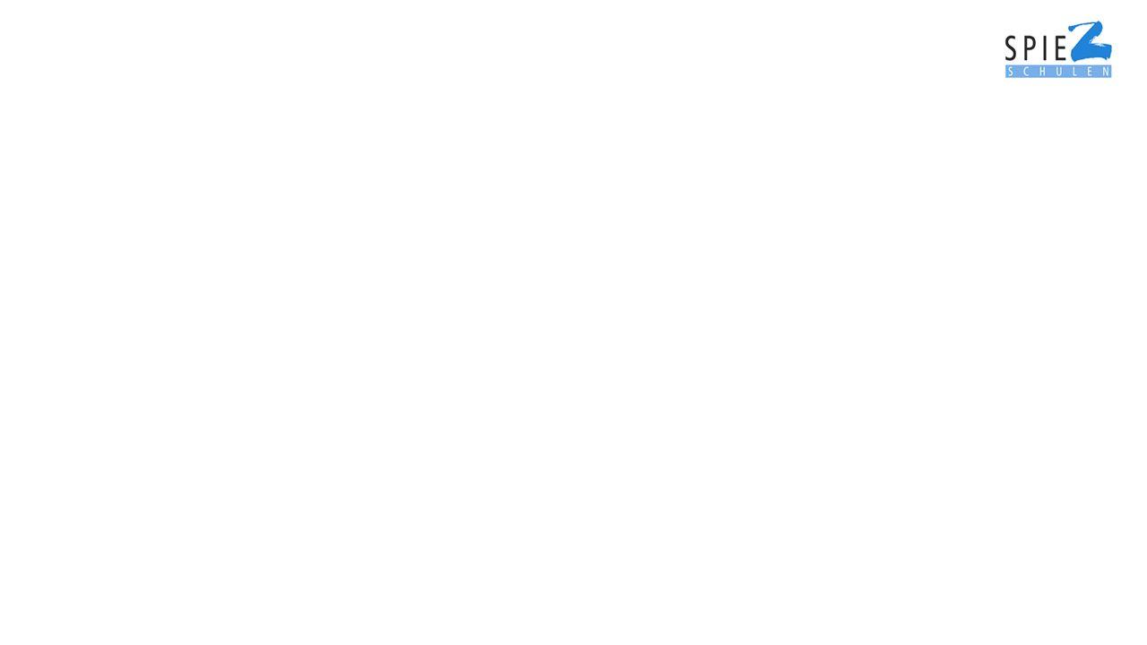 Ablauf eines Anlasses Vorinformation mit Flyer Elternbrief mit Liste der Berufe und Betriebe Vorbereitung mit Checklisten und Aufträgen im Berufswahlunterricht Durchführung des Anlasses Nachbearbeitung, Evaluation und Auswertung des Anlasses in der Klasse Nachwirkung