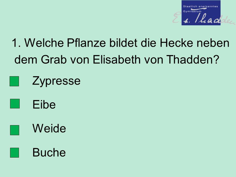 1. Welche Pflanze bildet die Hecke neben dem Grab von Elisabeth von Thadden.