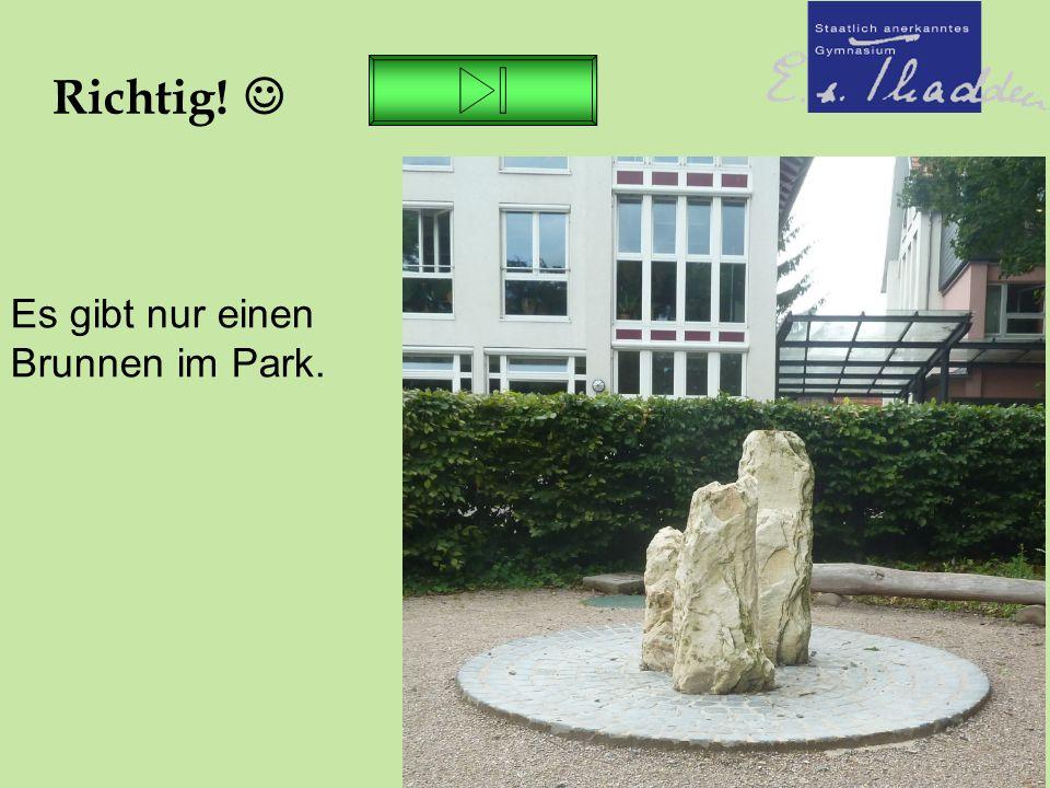 26.06.16 Richtig! Es gibt nur einen Brunnen im Park.