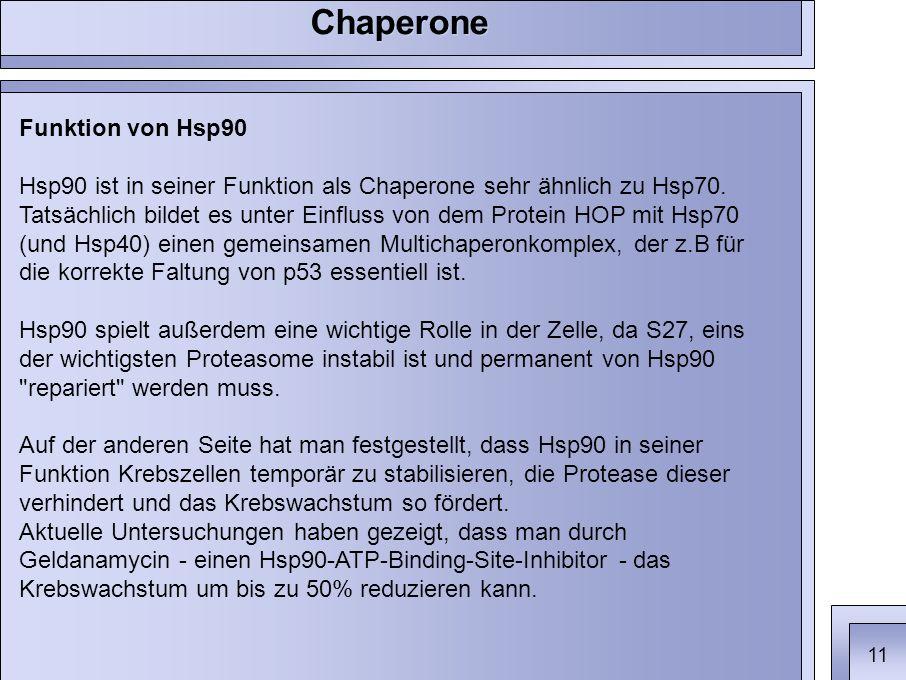 Funktion von Hsp90 Hsp90 ist in seiner Funktion als Chaperone sehr ähnlich zu Hsp70.