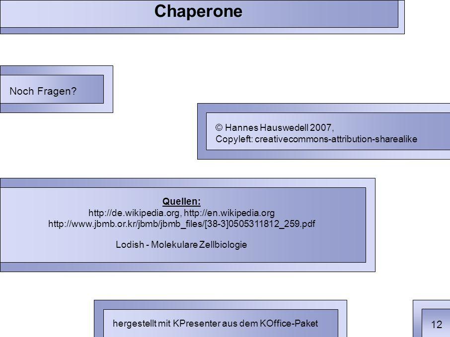 Chaperone Quellen: http://de.wikipedia.org, http://en.wikipedia.org http://www.jbmb.or.kr/jbmb/jbmb_files/[38-3]0505311812_259.pdf Lodish - Molekulare Zellbiologie Noch Fragen.