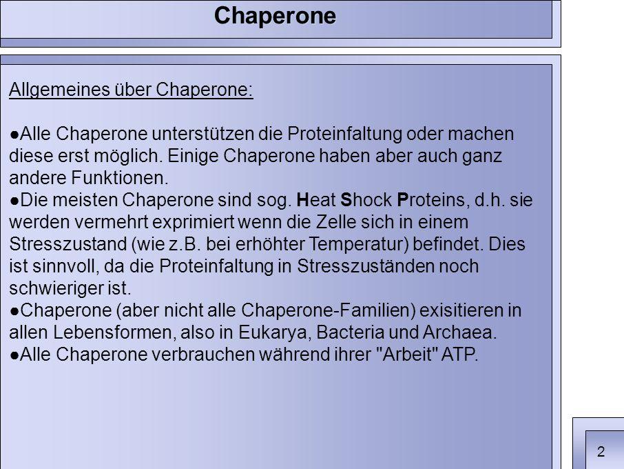 Allgemeines über Chaperone: ●Alle Chaperone unterstützen die Proteinfaltung oder machen diese erst möglich.