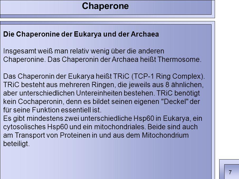 Die Chaperonine der Eukarya und der Archaea Insgesamt weiß man relativ wenig über die anderen Chaperonine.