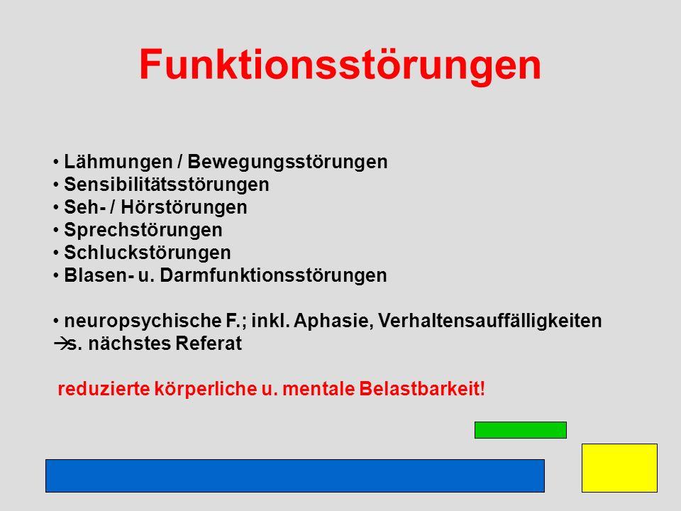 Funktionsstörungen Lähmungen / Bewegungsstörungen Sensibilitätsstörungen Seh- / Hörstörungen Sprechstörungen Schluckstörungen Blasen- u. Darmfunktions