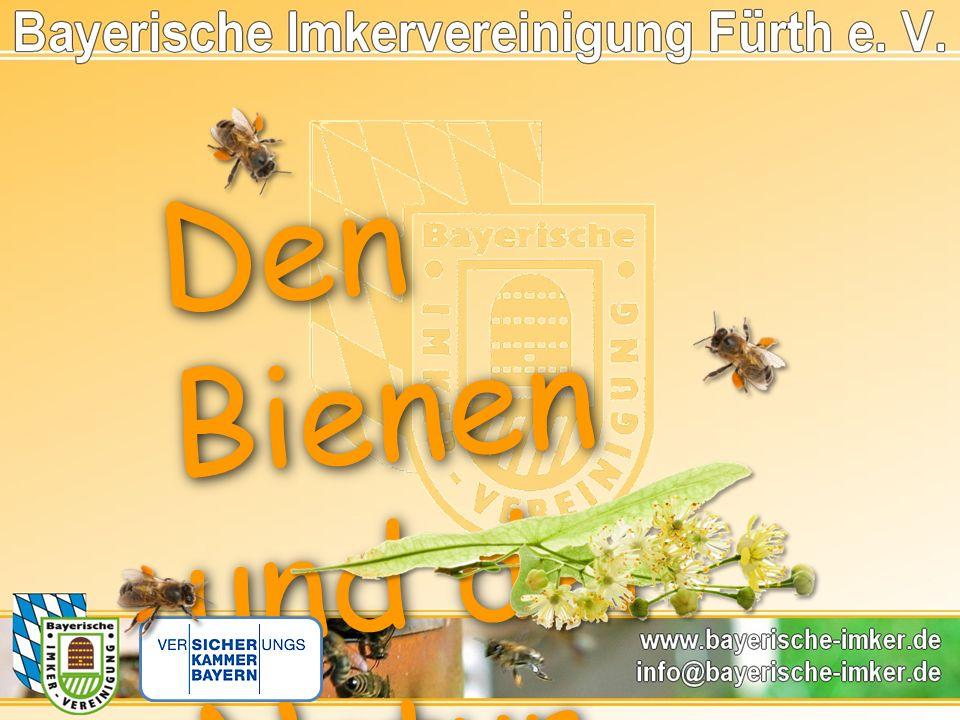 Den Bienen und der Natur verbunde n