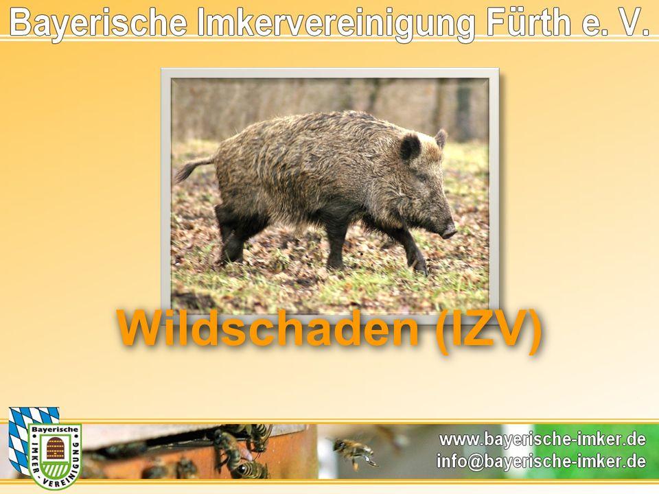 Wildschaden (IZV)