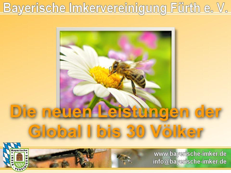Die neuen Leistungen der Global I bis 30 Völker