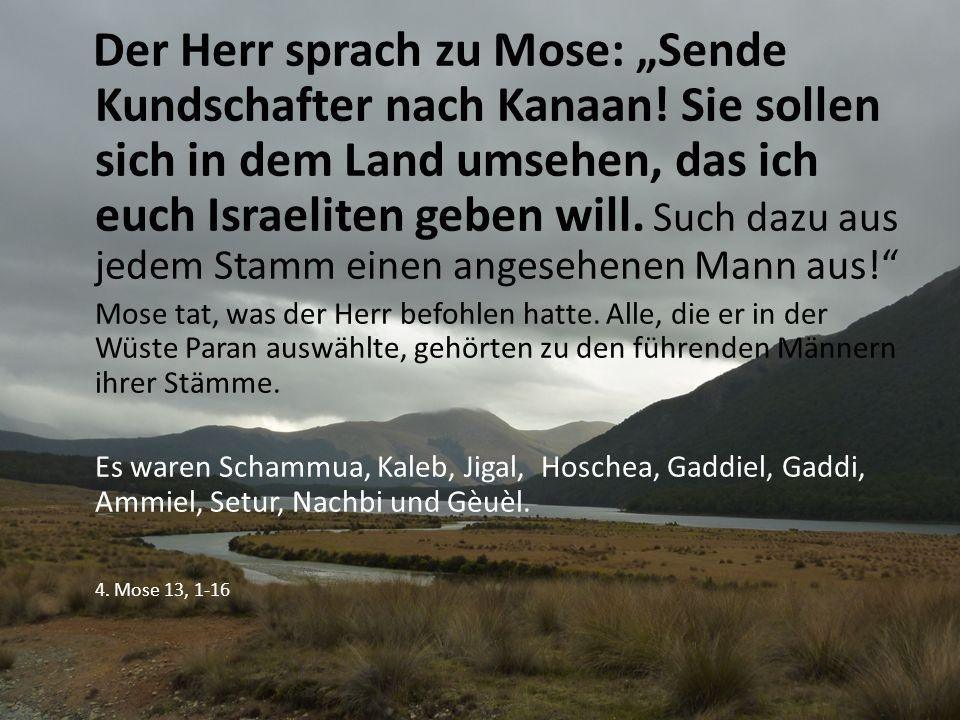 """Sie sagten zu Mose: """"Wir sind in dem Land gewesen, in das du uns geschickt hast."""