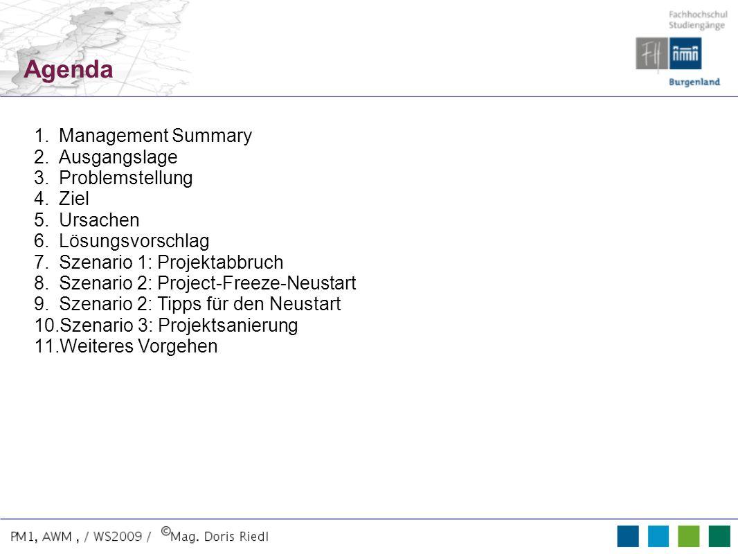 Agenda 1.Management Summary 2.Ausgangslage 3.Problemstellung 4.Ziel 5.Ursachen 6.Lösungsvorschlag 7.Szenario 1: Projektabbruch 8.Szenario 2: Project-F