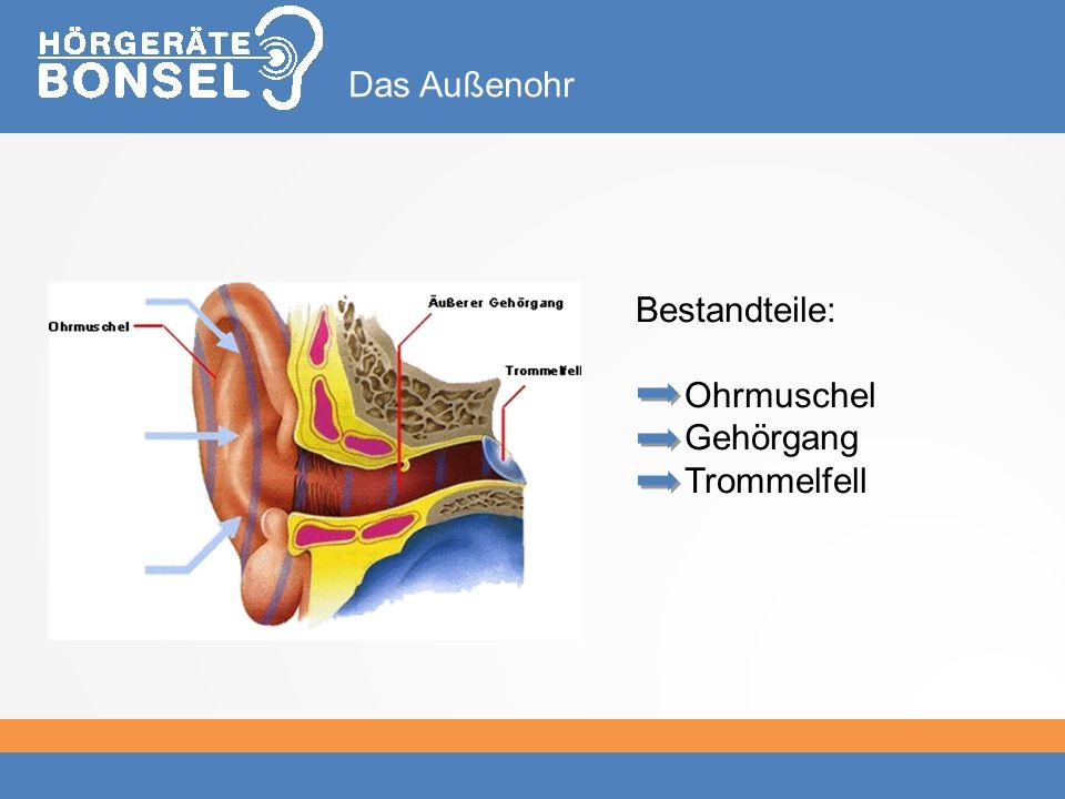 Bestandteile: Ohrmuschel Gehörgang Trommelfell Das Außenohr