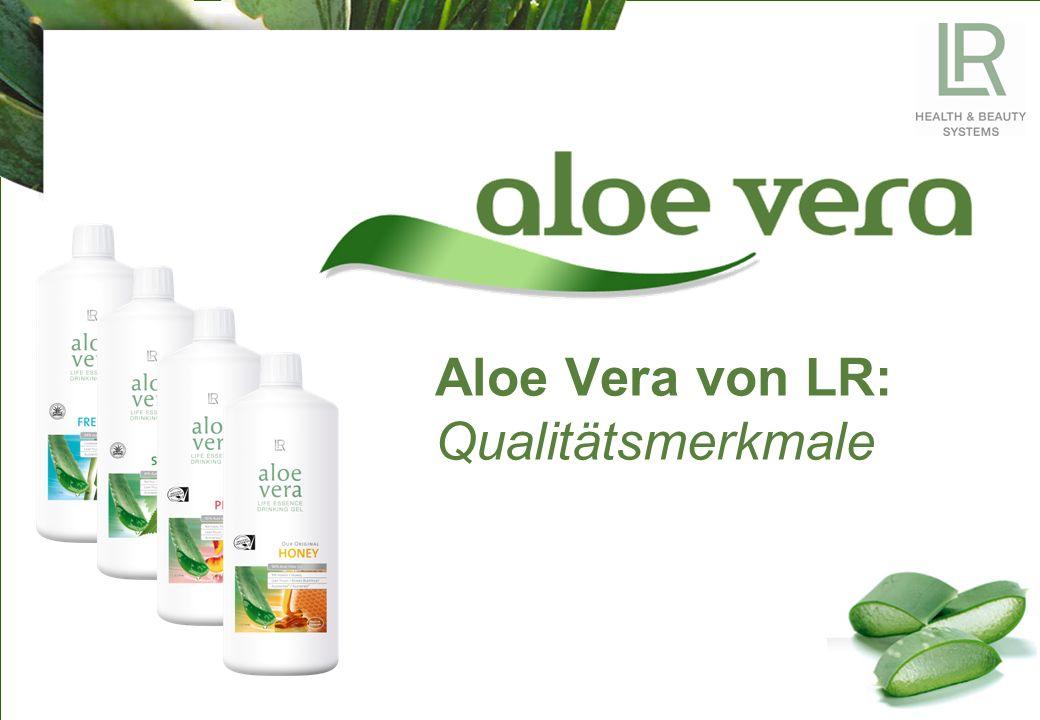 Aloe Vera von LR: Qualitätsmerkmale