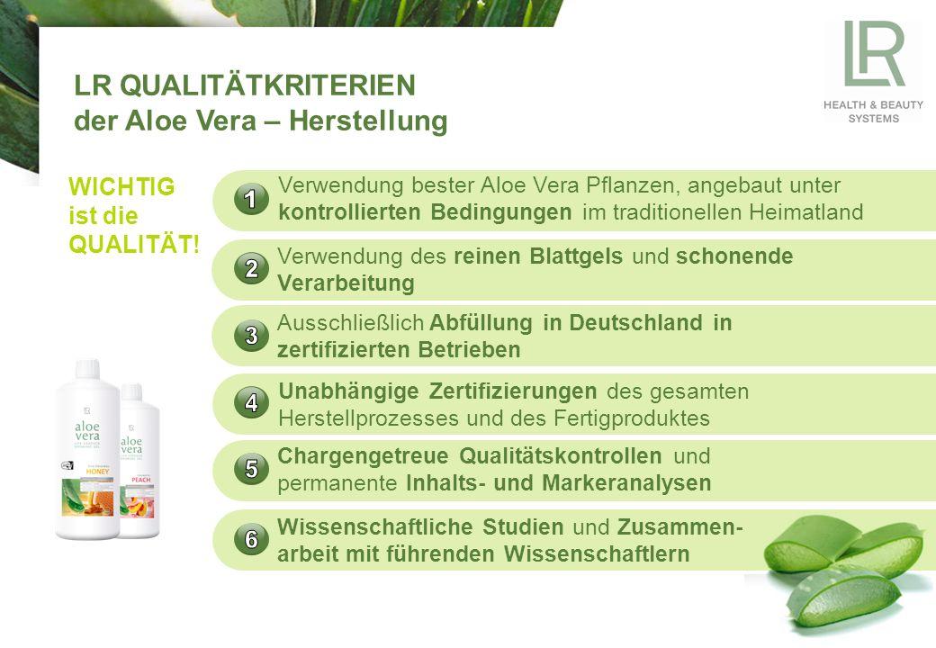 Aloe Vera von LR wird ausschließlich im traditionellen Heimatland Mexiko angebaut Die LR Ware wird unter kontrollierten Bedingungen angebaut, d.h.