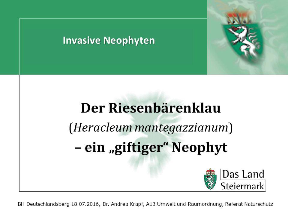 BH Deutschlandsberg 18.07.2016, Dr. Andrea Krapf, A13 Umwelt und Raumordnung, Referat Naturschutz Der Riesenbärenklau (Heracleum mantegazzianum) – ein
