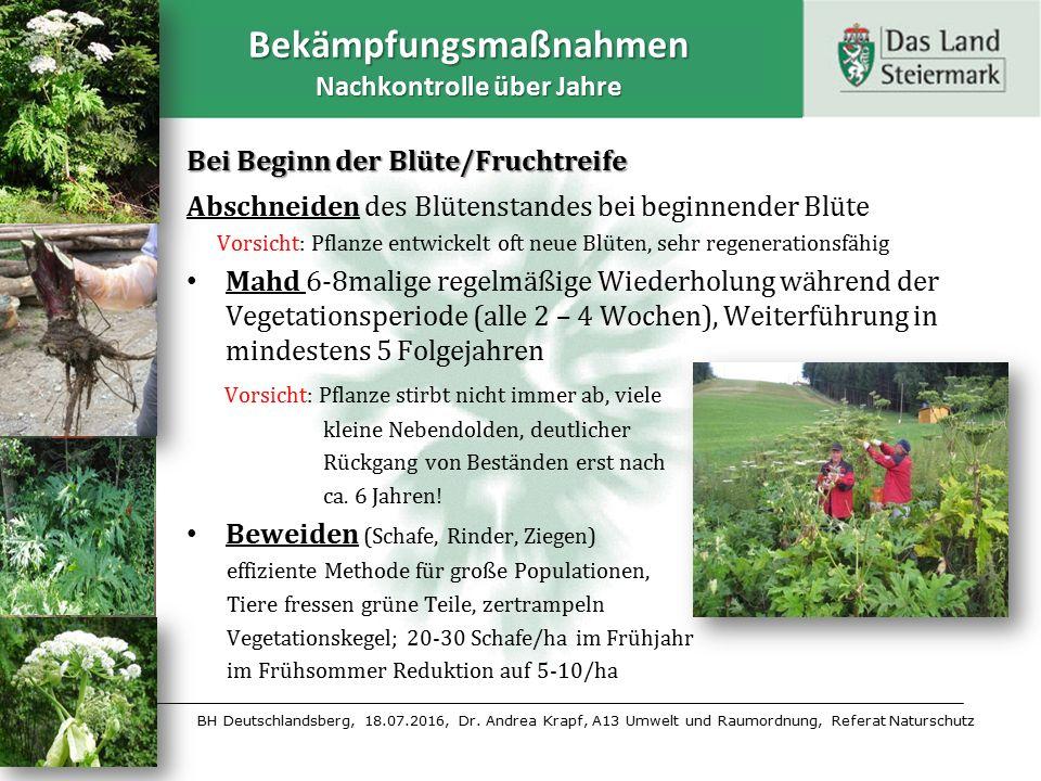 BH Deutschlandsberg, 18.07.2016, Dr. Andrea Krapf, A13 Umwelt und Raumordnung, Referat Naturschutz Bekämpfungsmaßnahmen Nachkontrolle über Jahre Bei B