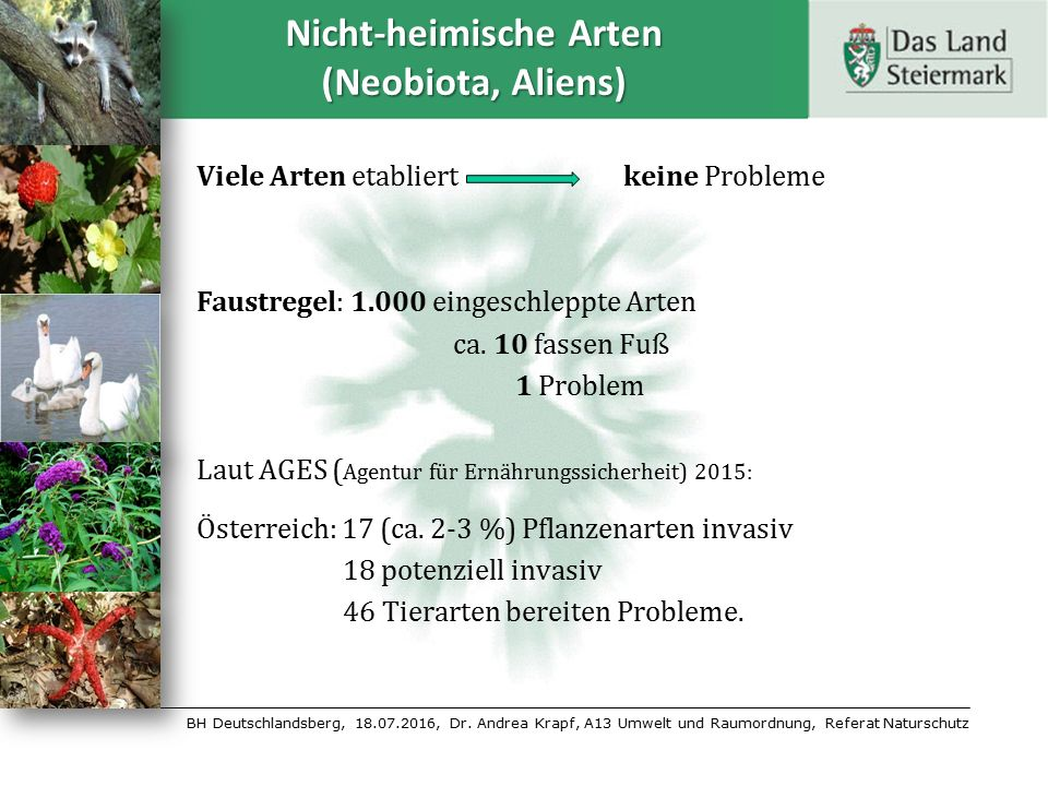 BH Deutschlandsberg, 18.07.2016, Dr. Andrea Krapf, A13 Umwelt und Raumordnung, Referat Naturschutz Nicht-heimische Arten (Neobiota, Aliens) Viele Arte