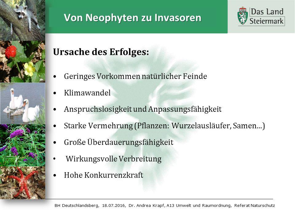 BH Deutschlandsberg, 18.07.2016, Dr. Andrea Krapf, A13 Umwelt und Raumordnung, Referat Naturschutz Ursache des Erfolges: Geringes Vorkommen natürliche