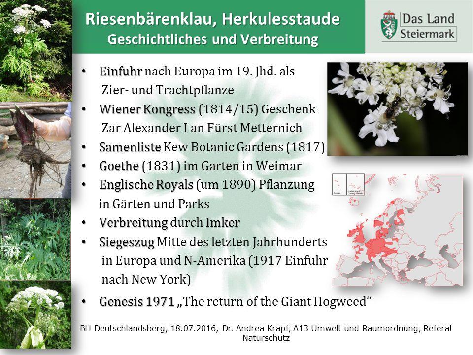 BH Deutschlandsberg, 18.07.2016, Dr. Andrea Krapf, A13 Umwelt und Raumordnung, Referat Naturschutz Riesenbärenklau, Herkulesstaude Geschichtliches und