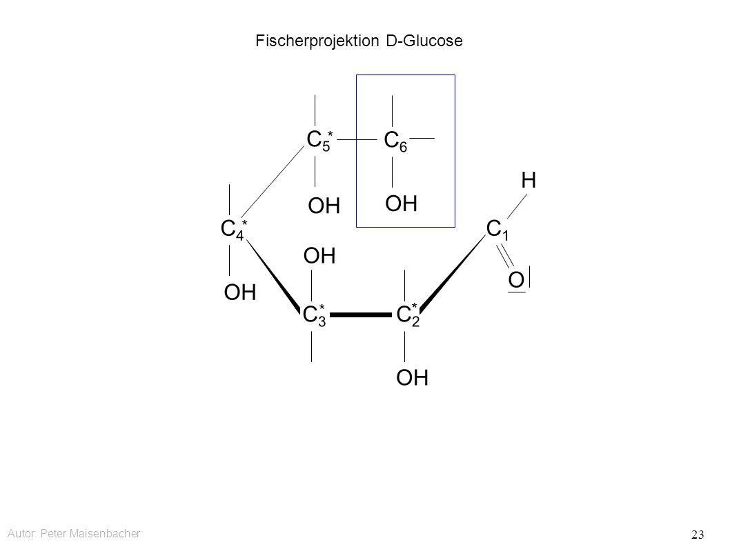 Autor: Peter Maisenbacher 23 Fischerprojektion D-Glucose OH C6C6 C5C5 * C4C4 * C3C3 * C2C2 * C1C1 O H
