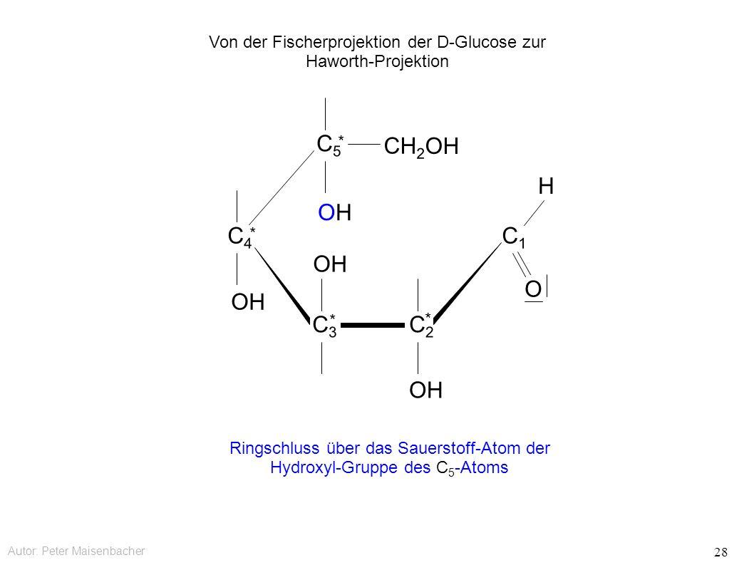 Autor: Peter Maisenbacher 28 OH OHOH CH 2 OH C5C5 * C4C4 * C3C3 * C2C2 * C1C1 O H Ringschluss über das Sauerstoff-Atom der Hydroxyl-Gruppe des C 5 -Atoms Von der Fischerprojektion der D-Glucose zur Haworth-Projektion