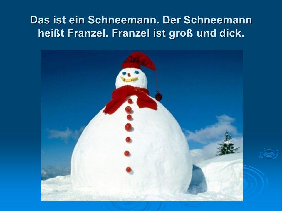 Das ist ein Schneemann. Der Schneemann heißt Franzel. Franzel ist groß und dick.