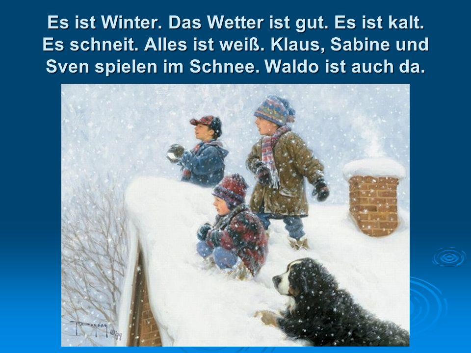 Es ist Winter. Das Wetter ist gut. Es ist kalt. Es schneit.
